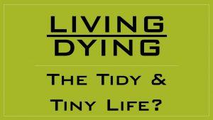 tidy-tiny
